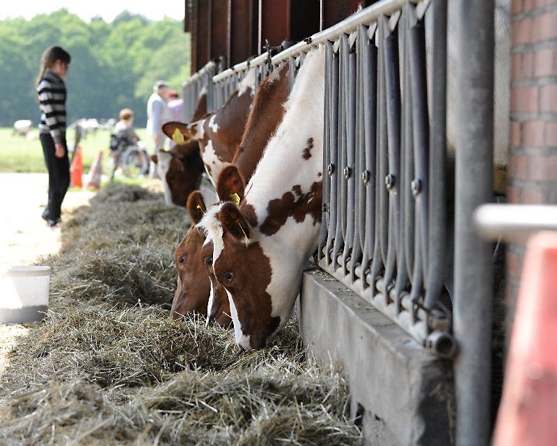 Melkveebedrijf Vermeulen onthult Land van Cuijk Boert Bewust bord